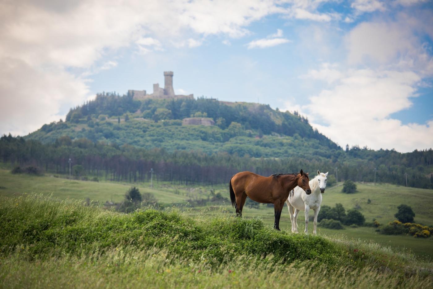 tuscany-trail-2018-022